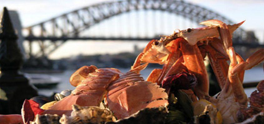 Sydney's Best Eateries